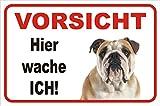 AdriLeo Schild - Vorsicht Englische Bulldogge Hier Wache ich (20x30cm)