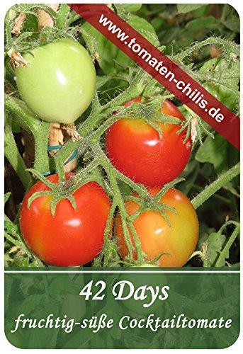 Tomaten Samen – 15 Stück – 42 Days – Cocktailtomate