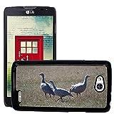 Grand Phone Cases Bild Hart Handy Schwarz Schutz Case Cover Schale Etui // M00141005 Cape Barren Gänse Gänse Tier // LG Optimus L90 D415