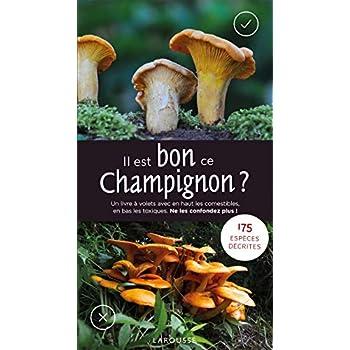 Il est bon ce champignon ?