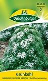 Grünkohl, Halbhoher grüner krauser
