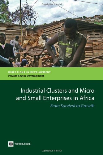 industrial-clusters-and-micro-and-small-enterprises-in-africa-from-survival-to-growth-directions-in-