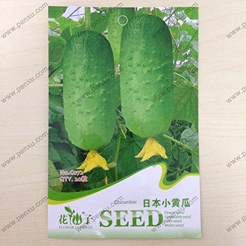 Fruits d'origine du paquet et graines de légumes, graines de concombre japonais, la floraison à maturité 60 jours, 20 particules de graines / sac