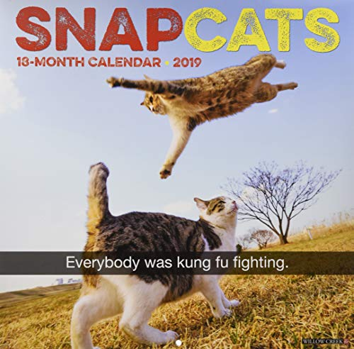 Snapcats 2019 Wall Calendar Creek-snap