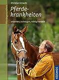 Pferdekrankheiten: erkennen und vorbeugen