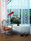 Athen Fensterbehang Viora fertig genäht mit Zierstange zur Beschwerung in chrom matt Schiebegardine Flächenvorhang Stickerei (140 cm hoch / 80 cm breit)