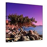 Kunstdruck - Mediterraner Baum auf Rhodos - Griechenland - Bild auf Leinwand auf 80 x 80 cm - Landschaften - Europa - violetter Sonnenuntergang über dem Mittelmeer