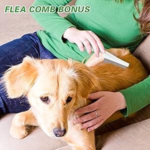 U-picks-Dog-Flea-Collar6-Months-Flea-and-Tick-Control-Protection-for-Dogs-CatsAdjustable-SizeWaterproofStop-Pest-BitesItchingBlue 51CoKDmOXBL