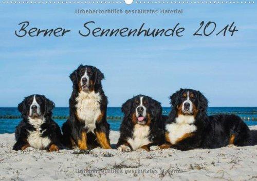 Berner Sennenhund 2014 (Wandkalender 2014 DIN A2 quer): Kalender Berner Sennenhunde 2014 (Monatskalender, 14 Seiten)