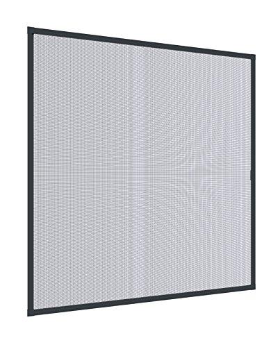 Windhager Moustiquaire Cadre Fixe Pour Fenetres Plus, Pare-moustiquaires Cadres en aluminium pour fenêtres, 140 x 150 cm, anthracite, 03901