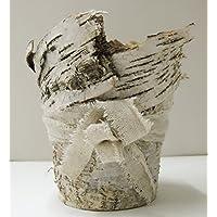Birkenrinde Topf ca. 11x13 cm natur Pflanztopf Vase Ostergesteck Tischdeko Lifestyle Saisondeko Frühling
