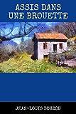Assis dans une brouette: Carnets de l'Île-Montagne - Tome 1 (French Edition)