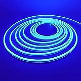 5M LED Lumière au néon, XUNATA 12V 2835 120leds / m imperméable à l'eau flexible LED Light Strip au néon avec, pour Chambre, Noël, Fête (Bleu)