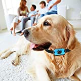 Best Bark Collars - Dog Anti Bark Collar No Harm No Shock Review