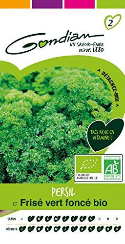 gondian-511992-cp-2-semences-persil-frise-fonce-bio-vert-1-x-81-x-16-cm