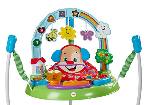 Fisher-Price Laugh and Learn Puppy's Activity Jumperoo - Babaloo