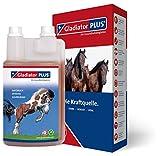 Gladiator Plus 1000ml wertvolle Futterergänzung für Pferde Darm Huf Haut Haar