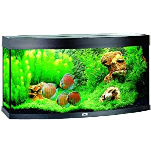 JUWEL Vision 260 Aquarium Noir