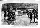 Telecharger Livres Le Concours Hippique 1891 Hall Agricole Royal Appareille des Beaux Arts Cuisine et Maison (PDF,EPUB,MOBI) gratuits en Francaise