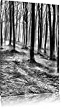 Monocrome, Düstere Landschaft schwarz weiß, Format: 120x80 auf Leinwand, XXL riesige Bilder fertig gerahmt mit Keilrahmen, Kunstdruck auf Wandbild mit Rahmen, günstiger als Gemälde oder Ölbild, kein Poster oder Plakat
