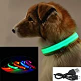AGIA TEX Germany LED-Hundehalsband - Leuchthalsband für Hunde USB Aufladbar XS Orange