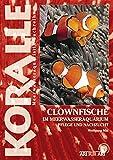 Clownfische im Meerwasseraquarium: Pflege und Nachzucht (Art für Art)