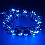 Smartfox 10m 100 LED USB Leuchtdraht Lichtdraht Micro Lichterkette Mini Leuchte ideal zur Deko in blau