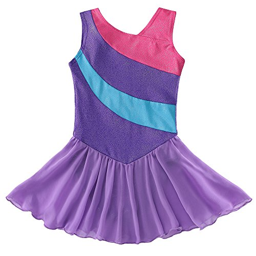 Kidsparadisy Girls Tulle Ballet Dress Dancewear Sleeveless Rainbow Stripe Gymnastic Leotard Tutu Skirt for 2-11Y Girls (Purple, 110(3-4T))