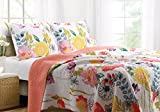 Greenland Home 2-piece Watercolor Dream Quilt set, Twin, multi