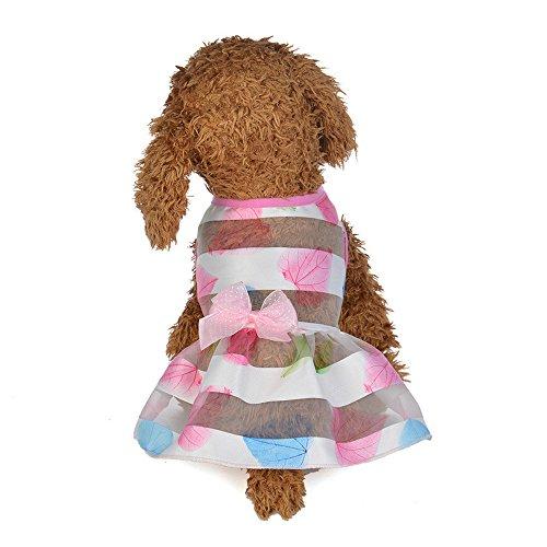 Sweetie Prinzessin Kostüm - sunnymi Mode niedliche kleine Haustier Hundebekleidung Schöne Hund Katze Frühling Bunte Prinzessin Kleid Welpen Kleidung Kostüm für Walking Jogging (XS, B)