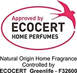Biobel Spray Quitamanchas Ecológico, 250ml Jabón Potásico que Elimina Manchas Difíciles en Ropa Blanca y de Color