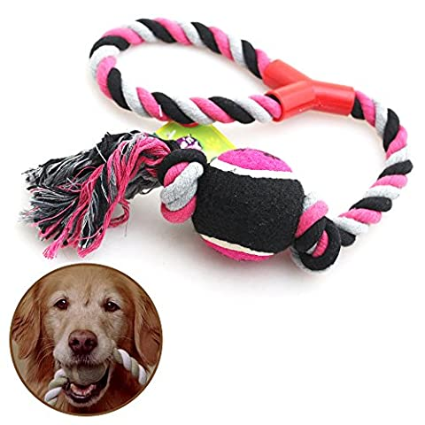 Pet Dog Puppy Throw Ball Toy (Red) Tennis exercise Ball with Large Playing Rope Tug Chewing Fetch Bite