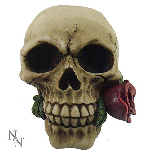 Romance non muore mai Teschio Rosa, 11cm, Nemesis Now