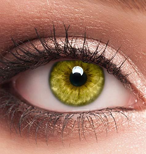 ELFENWALD farbige Kontaktlinsen, 3-Monatslinsen, besonders natürlicher Look, maximaler Tragekomfort, SUPREME Serie, ohne Stärke, 1 Paar weiche Farblinsen ohne Zusatzbehälter (Grünbraun)