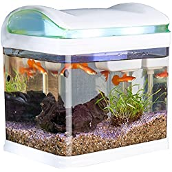 Sweetypet Aquarium: Transport-Fischbecken mit Filter, LED-Beleuchtung und USB, 3,3 Liter (Mini Aquarium)