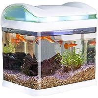 aquarien haustier. Black Bedroom Furniture Sets. Home Design Ideas