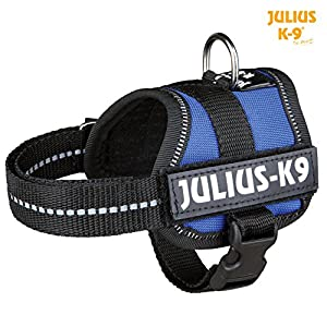 Julius-K9, Powerharness 9