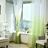 Fourseasons vorhänge transparent Voile Gardinen Vorhang 1 Panel für Wohnzimmer Schlafzimmer 100*270 CM