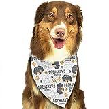 Hipiyoled Dachshund Puppies Adjustbable Collars Pet Bandana Bibs for Puppy Cats