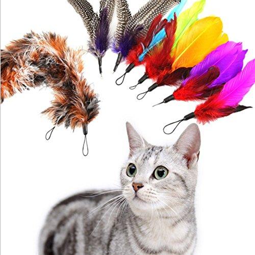 Katzenspielzeug Katze Spielzeug Federstab und Katzenangel Ersatzfedern Anhänger(Samtbeutel) Verschiedene Vogelfedern