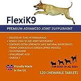 Gelenk Ergänzungsfutter für Hunde | Gegen Arthritisschmerzen, Hüftprobleme, Rheuma, Arthrose & Bewegungsprobleme | Gelenkschutz für Ihren Hund |120 Extra Starke & Kaubare Gelenketabletten - 2
