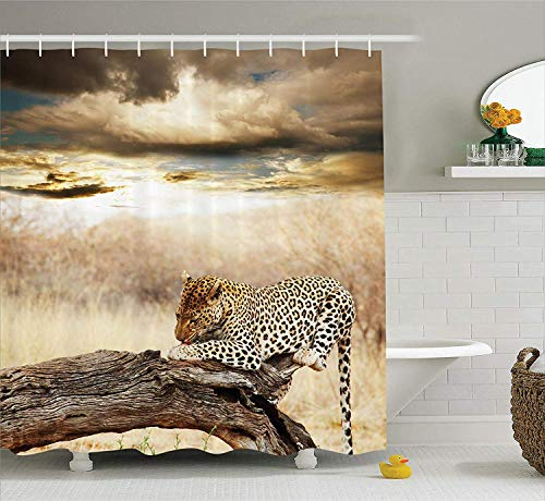 VVIANS Safari Decor Shower Curtain Set, Leopard Resting Under Dramatic Cloudy Sky Africa Safari Wild Cats Nature Picture Print, Bathroom Accessories, 60 * 72 Inch Beige Brown Green Leopard Snap