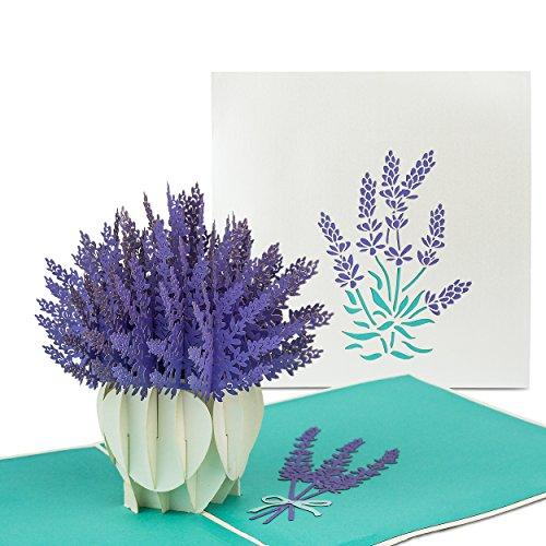 """PaperCrush® Tarjeta Pop Up Flores """"Lavanda"""" - 3D Flower Card como un regalo especial para la madre, abuela - Tarjeta de cumpleaños hecha a mano con motivo de la Flor incluido sobre"""