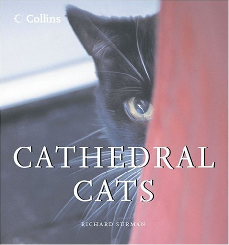 Cathedral Cats por Richard Surman