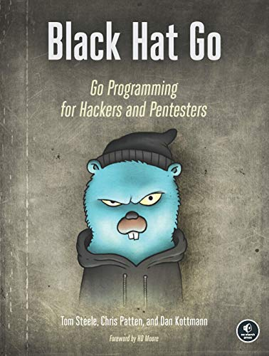 Black Hat Go: Go Programming For Hackers and Pentesters (English Edition)