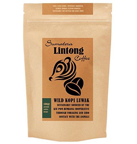 Terreno Salvaje Kopi Luwak, el Mundo más exclusivas de café, de Fuentes sostenibles. De Sumatra, Indonesia (café molido, 100gr)