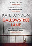 Gallowstree Lane: From one of the rising stars of crime fiction, perfect for fans of Broadchurch and Happy Valley (The Metropolitan Series)