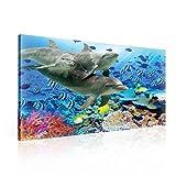 Delfine Korallen Ozean Unterseeisch Leinwand Bilder (PP116O1FW) - Wallsticker Warehouse - Size O1 - 100cm x 75cm - 230g/m2 Canvas - 1 Piece