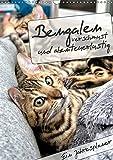 Bengalen - verschmust und abenteuerlustig (Wandkalender 2019 DIN A3 hoch): Ein Jahresplaner mit zwei abenteuerlustigen und verschmusten Bengalen (Planer, 14 Seiten ) (CALVENDO Tiere)