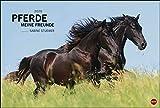 Pferde Meine Freunde 2020 58x39cm